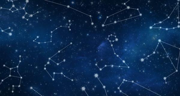 Constelação Veterinária Sistêmica